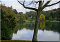 ST7734 : Across the ornamental lake, Stourhead by Brian Robert Marshall