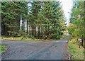 NH5055 : Loch Ussie Road End by valenta