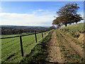 SJ9888 : Bridleway from Meadows Farm to Mellor by Stephen Burton