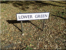 TL8930 : Lower Green sign by Adrian Cable