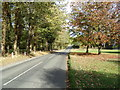 TL8930 : Bures Road, White Colne by Geographer