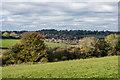 TQ3057 : Towards Woodplace Lane by Ian Capper