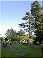 ST5570 : All Saints' churchyard by Neil Owen