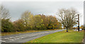 NZ2514 : A67 passing Low Coniscliffe by Trevor Littlewood