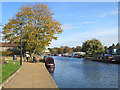 TL5479 : Ely: Quayside in autumn by John Sutton