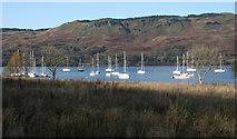 NM8312 : Kilmelford Yacht Haven by Richard Sutcliffe