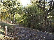 NZ3955 : Path marker in Backhouse Park, Sunderland by Malc McDonald