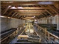 NH4944 : Fish Hatchery Interior by valenta