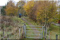 NJ0326 : A Walker on the Speyside Way by Anne Burgess