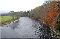 NJ0426 : River Spey by Anne Burgess