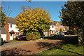 SX8967 : Cormorant Close, The Willows by Derek Harper