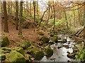 SK2579 : Burbage Brook in Padley Gorge : Week 45
