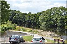 Q9833 : River Feale by N Chadwick