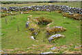 R2399 : Sinkhole, Caherconnell by N Chadwick