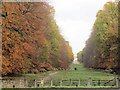 SP9812 : Autumn colours along the tree-lined avenue  towards Ashridge House by Chris Reynolds