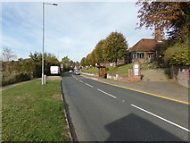 TL8131 : A1124 Hedingham Road, Halstead by Adrian Cable