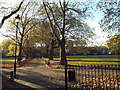 TQ3185 : Autumn sunlight on Highbury Fields by Malc McDonald