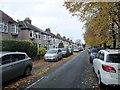 SJ4088 : Green  Lane  North  an  autumnal  scene by Martin Dawes
