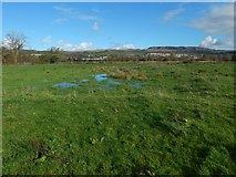 NS3976 : Old curling pond by Lairich Rig