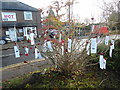 SP8700 : Tree with Remembrance labels, Prestwood (2) by David Hillas