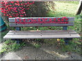 SP8700 : Seat with Commemorative Poppies in Prestwood by David Hillas