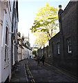 TL4458 : Botolph Lane by Bob Harvey