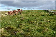 NJ2031 : Hill of Deskie by Anne Burgess