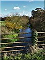 SK6873 : The River Meden north of Haughton Hall Farm by Neil Theasby