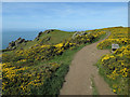 SX7036 : South West Coast Path past The Goat by Hugh Venables