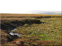 NY7837 : Spongy ground on Yad Moss by Mike Quinn