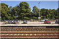 SX8060 : Totnes Station by N Chadwick