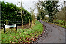 H4277 : Tully Road, Tattraconnaghty by Kenneth  Allen