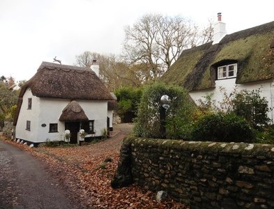 SY0990 : Thatched cottages, Harpford by Roger Cornfoot