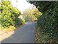 SJ5172 : School Lane at Buckoak by Peter Wood