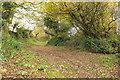 SX7543 : Green lane junction southeast of Duncombe Cross by Derek Harper