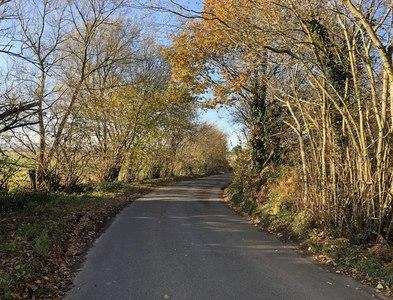 SU8321 : Corner on Terwick Lane by Chris Thomas-Atkin