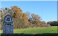 SU8684 : Cookham Dean Common by Des Blenkinsopp