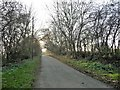NZ4809 : Holme Lane on an autumn afternoon by Christine Johnstone