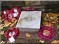 SO9198 : Wolverhampton VC by Gordon Griffiths