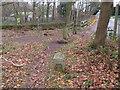 SJ2484 : Thurstaston Recreation Ground Boundary Stone #3 by John S Turner