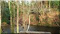 SX8078 : River Bovey near Southbrook Bridge by Derek Harper