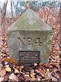 SJ2485 : Thurstaston Recreation Ground Boundary Stone #4 by John S Turner