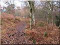 SJ2485 : Footpath on Thurstaston Hill and boundary stone #4 by John S Turner