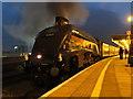 ST1875 : Railtour at Cardiff Central : Week 47