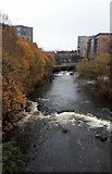 NS5666 : Weirs on the River Kelvin at Kelvin Hall by Gordon Brown