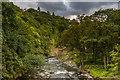 NY2824 : River Greta by Ian Capper