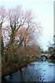 SE3170 : New Bridge, Ripon by Derek Harper