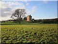 NY3871 : Kirkandrews Tower by Jonathan Thacker
