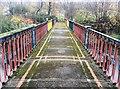 SK3588 : The Iron Bridge 1841 by Graham Hogg