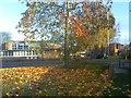 SO9496 : Autumn Clinic by Gordon Griffiths